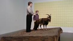 Niño que se folla a la cabra